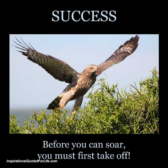 before-you-can-soar