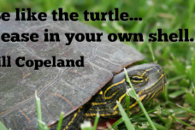 """Be like the turtle…at ease in your own shell."" ~ Bill Copeland"